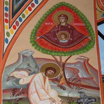 pictura-bisericeaca-Bumbu-Liviu-Manastirea-Adormirii-Maicii-Domnului-Dumbrava-Alba-Iulia-(23)